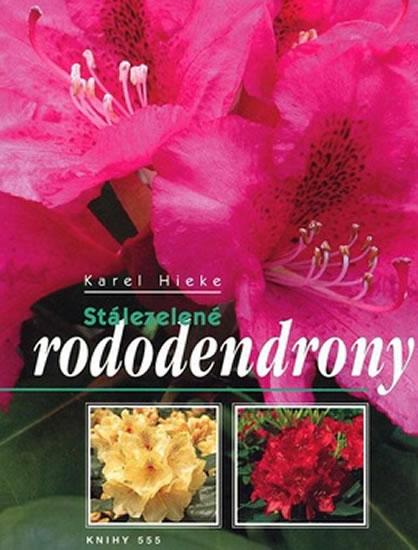 Stálezelené rododendrony - zvìtšit obrázek